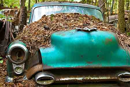 junk cars gresham